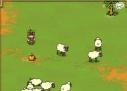 חזירים רועים